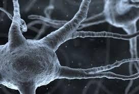 Νόσος- ALS-τι είναι