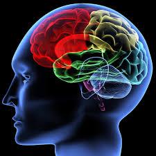 Σχιζοφρένεια-τι είναι