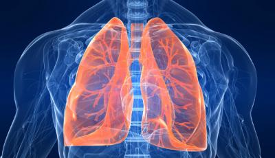Βρογχικό άσθμα και αλλεργική ρινίτιδα